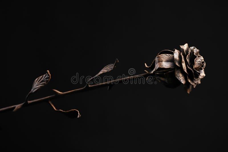 La rosa del color de bronce en un fondo negro imágenes de archivo libres de regalías