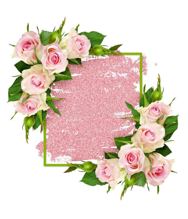 La rosa del rosa florece y un marco verde en pincelada del brillo fotos de archivo