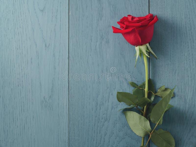 La rosa del rojo en la tabla de madera azul tiró desde arriba fotos de archivo libres de regalías