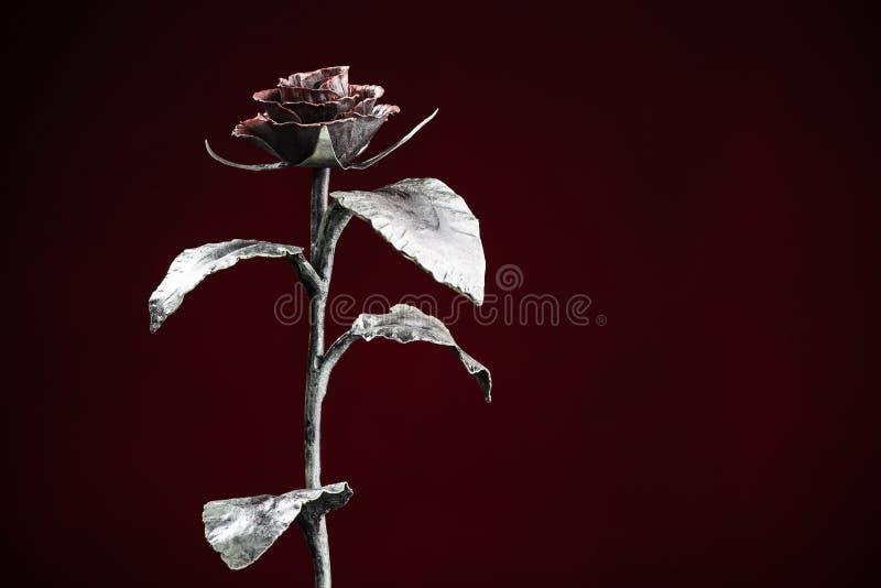 La rosa en luz en el fondo rojo oscuro fotografía de archivo