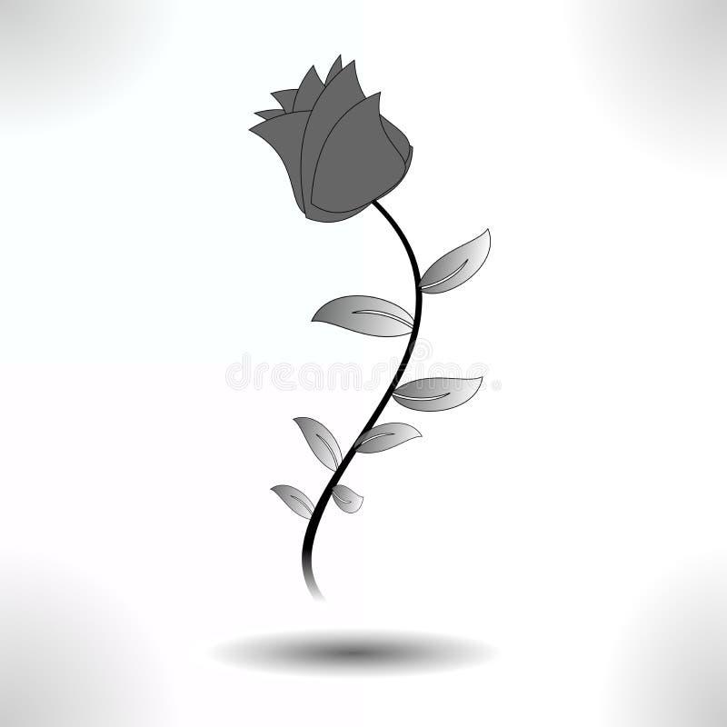 La rosa, simple aislada en sombra imagenes de archivo