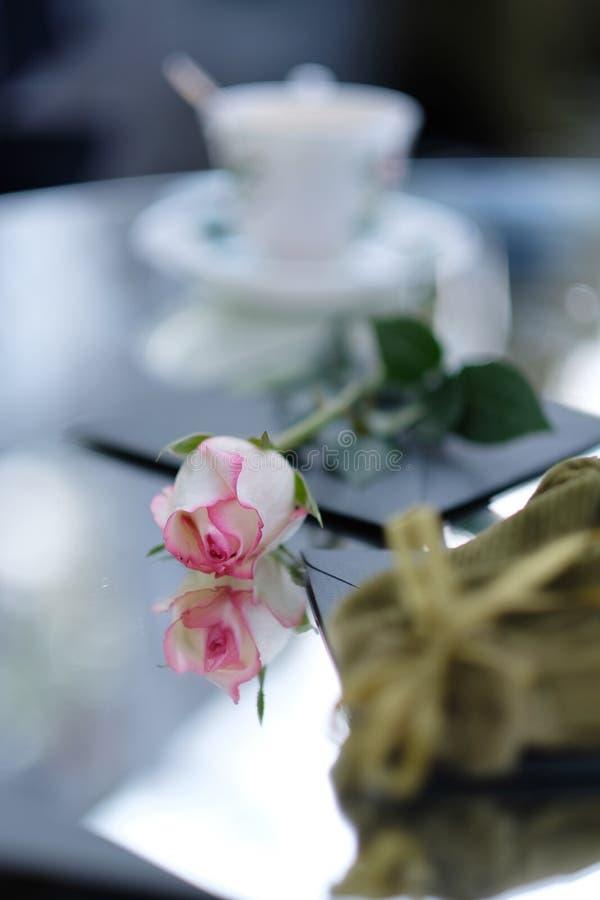 La rose de blanc et de rose bourgeonnent le mensonge sur une table photographie stock