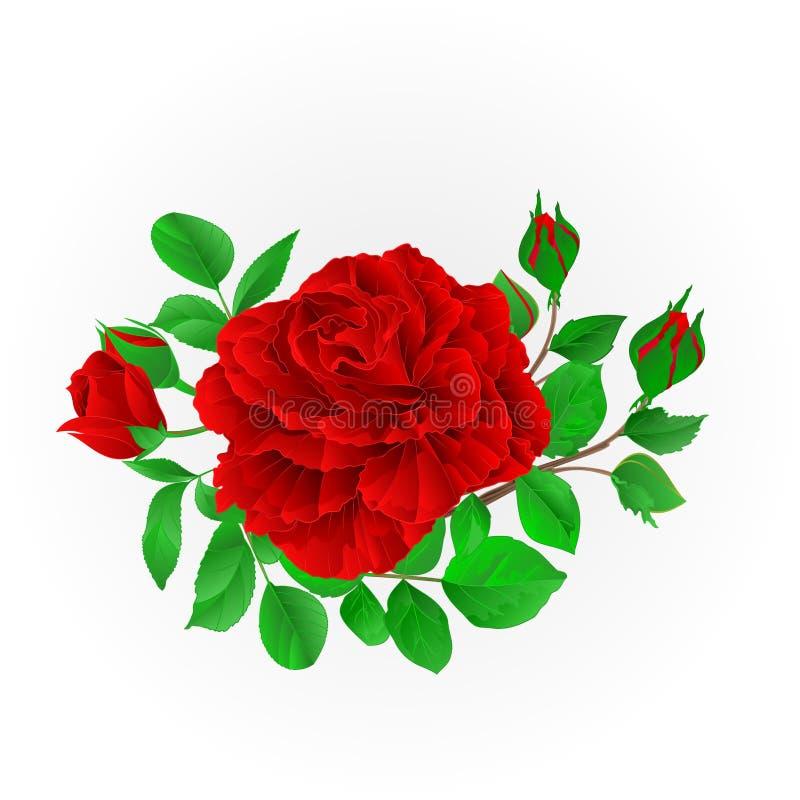 La rose de rouge avec le fond de fête de vintage de bourgeons et de feuilles dirigent l'illustration editable illustration stock