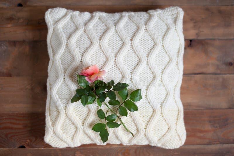 La rose se trouve sur un oreiller photo stock