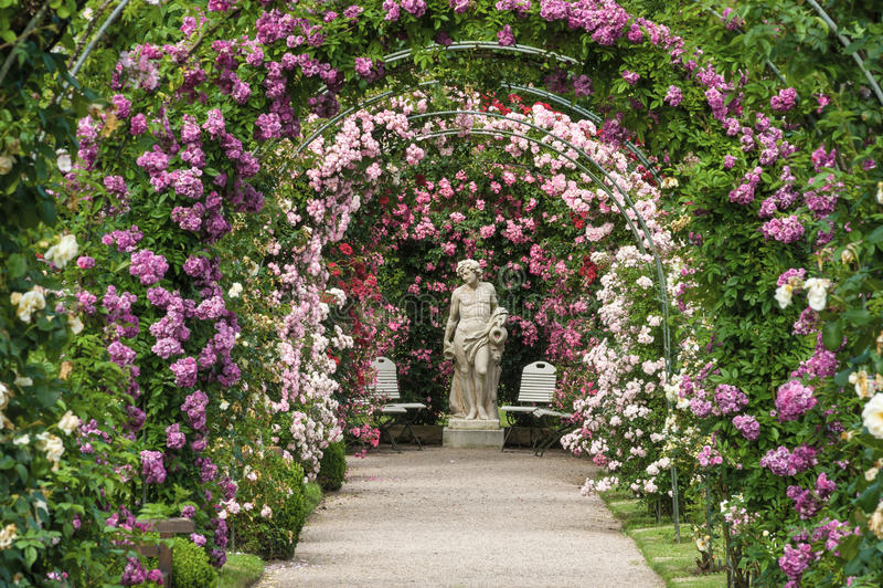 La roseraie Beutig dans Baden-Baden photos stock