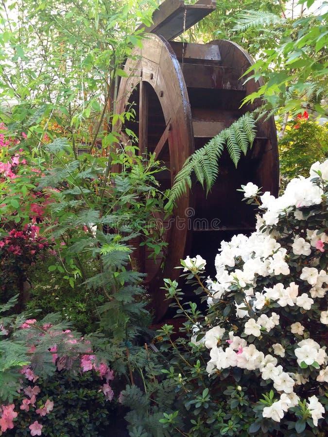 La roue d'un moulin à eau parmi des fleurs photographie stock