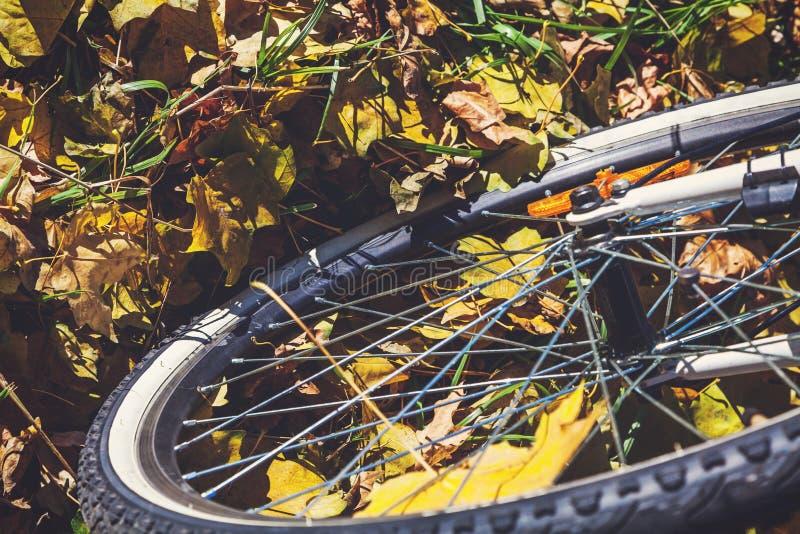 Download La Roue De Bicyclette Se Tient Sur Les Feuilles Tombées Des Arbres Photo stock - Image du érable, moderne: 77158914