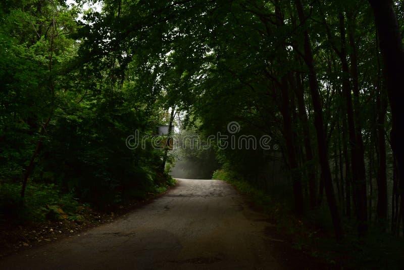 La route à nulle part photo libre de droits