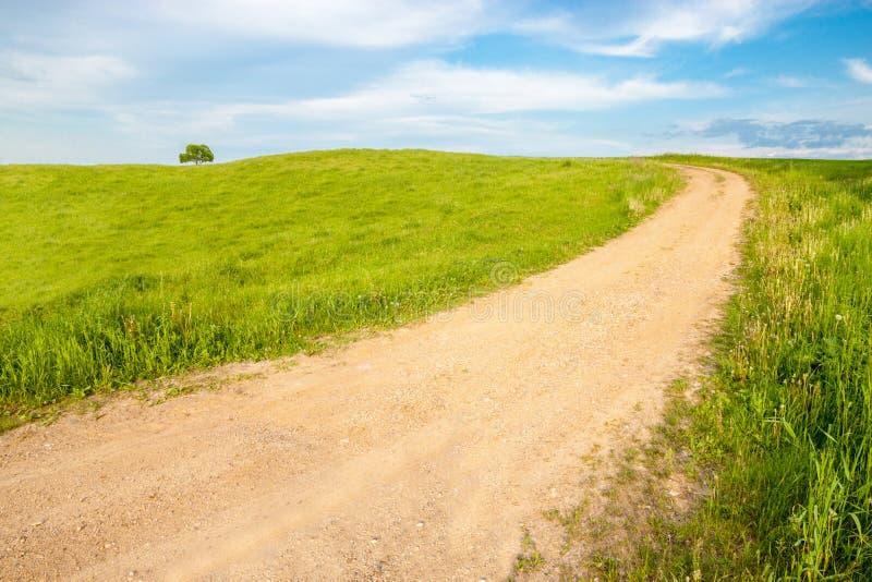 La route à un arbre isolé photographie stock libre de droits