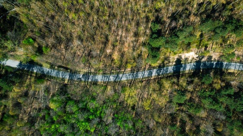 La route dans la forêt, longues ombres, complètent en bas de la vue aérienne image stock