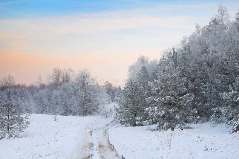 La route dans la forêt d'hiver images stock