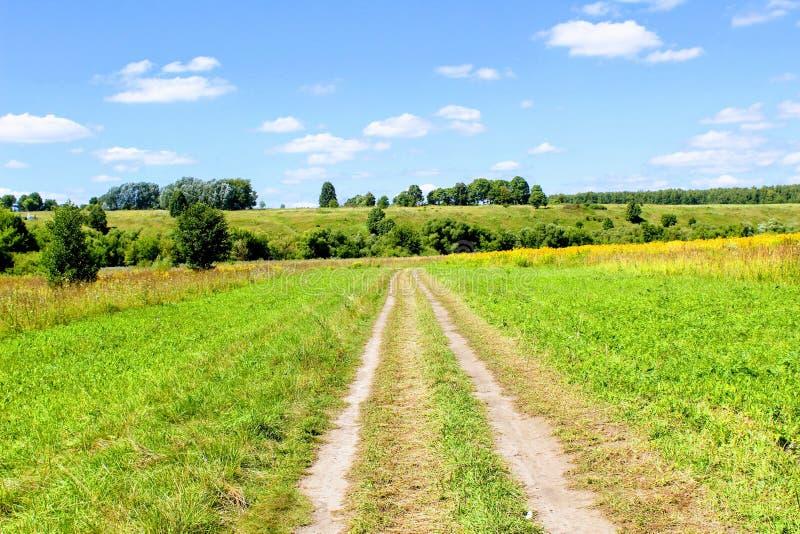 La route dans les domaines avec l'herbe fauchée le long des deux côtés images libres de droits