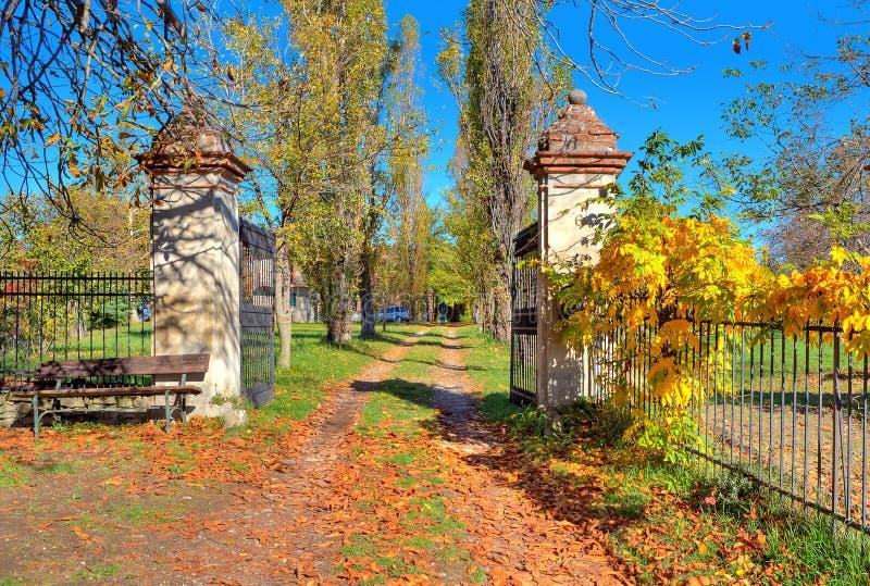 La route de campagne parmi des arbres couverts de jaune part en Italie. images stock