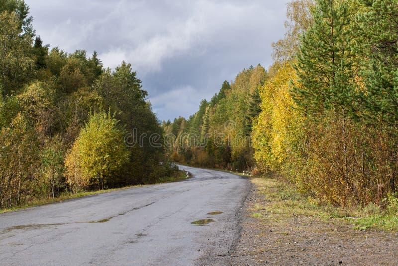 La route goudronnée s'enroulent par la forêt colorée d'automne photographie stock libre de droits