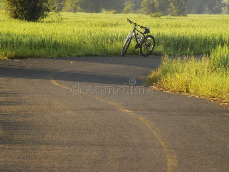 Download La Route Met En Place Le Lever De Soleil Photo stock - Image du fermier, arbres: 45367640