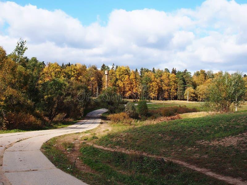 La route par le temps ensoleill? de for?t d'automne D?tails et plan rapproch? photographie stock libre de droits