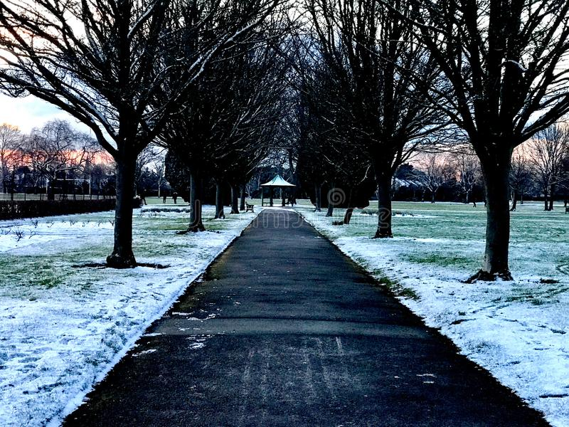 La route par la neige a rempli parc d'herbe verte dans la soirée photos libres de droits