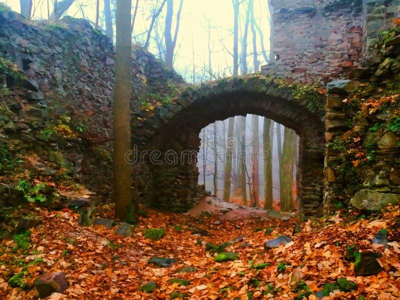 La ruine du château dans la forêt moyenne photo libre de droits
