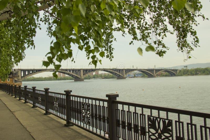 La Russia, Krasnojarsk, giugno 2019: Argine del fiume Enisej e del ponte comunale fotografia stock