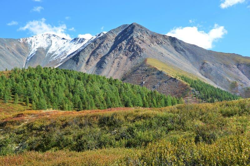 La Russie, République d'Altai, plateau Yoshtykyol dans le jour nuageux images libres de droits