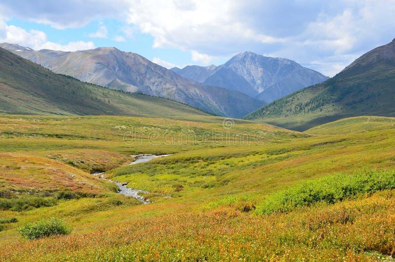 La Russie, R?publique d'Altai, plateau Yoshtykyol dans le jour nuageux photographie stock libre de droits