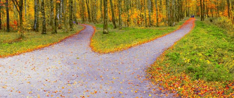 La ruta en el parque del otoño diverge en dos pistas de senderismo en diversas direcciones imágenes de archivo libres de regalías