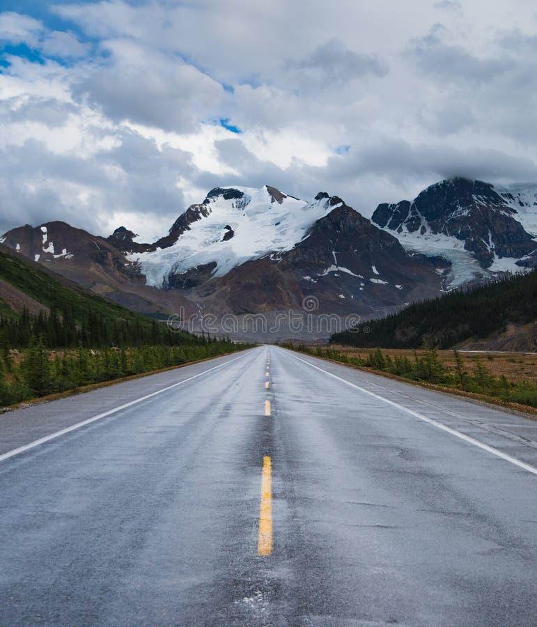La ruta verde del ` s del icefield entre Banff y el jaspe imagen de archivo libre de regalías