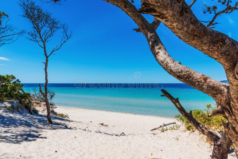 La sabbia ed il turchese bianchi innaffiano in spiaggia di Maria Pia immagine stock