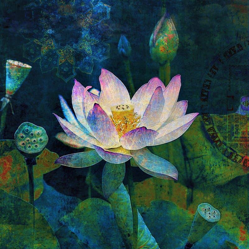 La Sagesse De La Fleur De Lotus illustration libre de droits