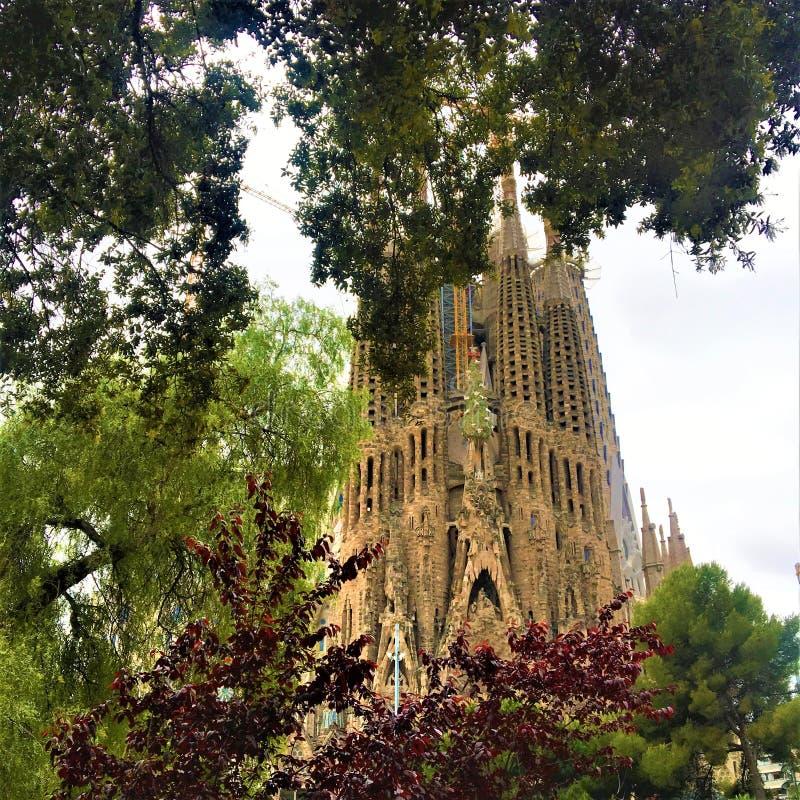 La La Sagrada Familia di Expiatori de del tempio e natura nella città di Barcellona, Spagna fotografia stock
