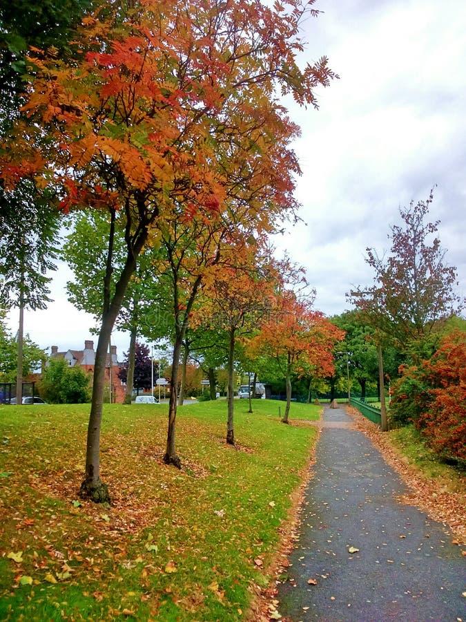 La saison d'automne se sent photo stock