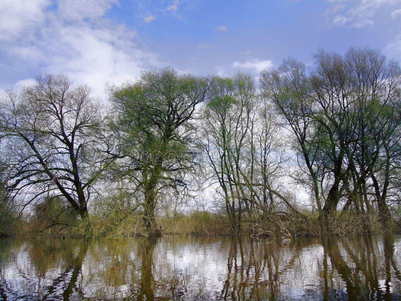 La saison de marée haute de ressort sur la rivière images libres de droits