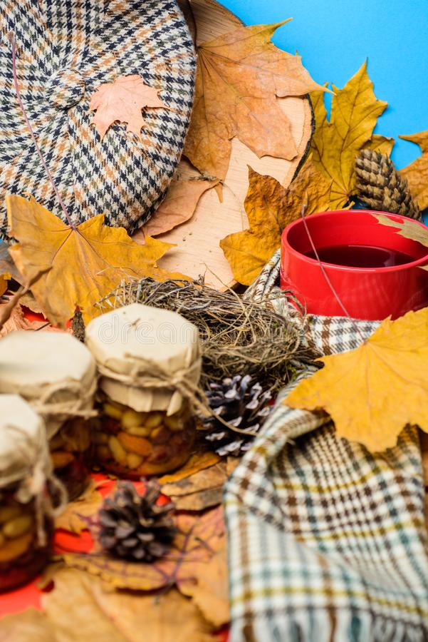 La saison faite maison naturelle d'automne de festins maintiennent sain Boisson automnale avec les bonbons naturels faits maison  photos stock