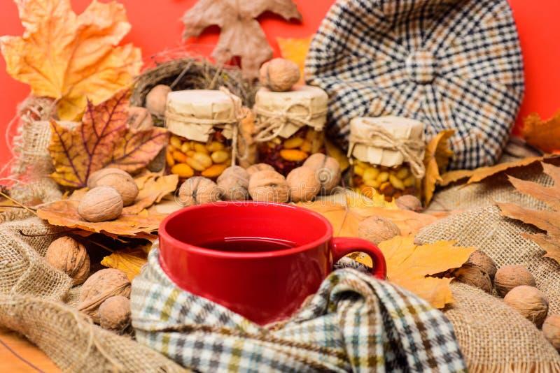 La saison faite maison naturelle d'automne de festins maintiennent sain L'écharpe de chapeau et les bonbons naturels à miel dans  photo libre de droits