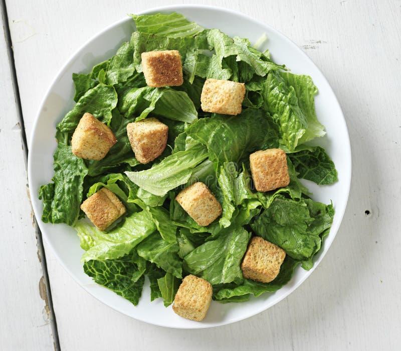 La salade de César tirée à partir du dessus visualisent vers le bas images stock