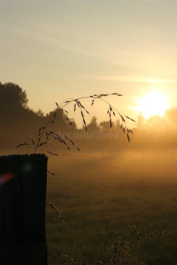 La salida del sol en el campo imágenes de archivo libres de regalías