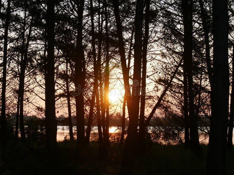 La salida del sol en la laguna fotos de archivo libres de regalías