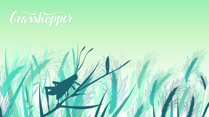 La sauterelle de scarabée se repose sur une lame d'herbe dans l'illustration de buissons La vie des insectes dans l'illustration  photo libre de droits