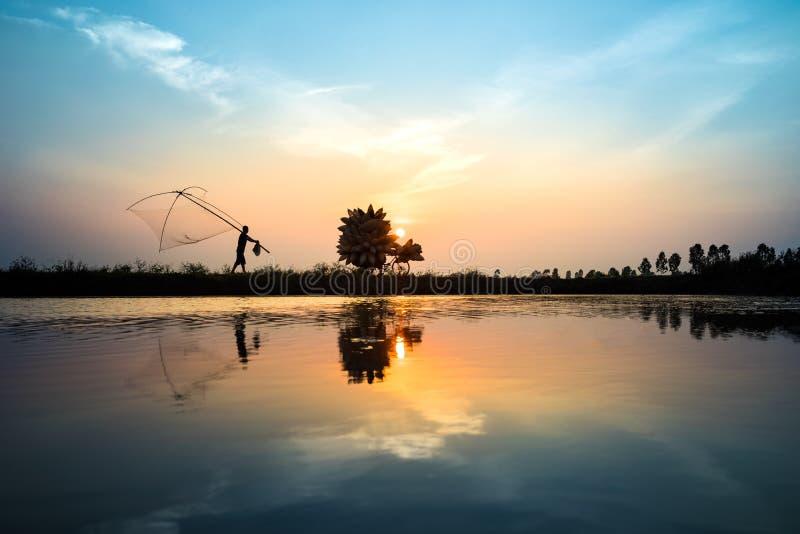 La scène rurale vietnamienne de coucher du soleil de campagne avec des agriculteurs de silhouette portant les poissons en bambou  photo libre de droits