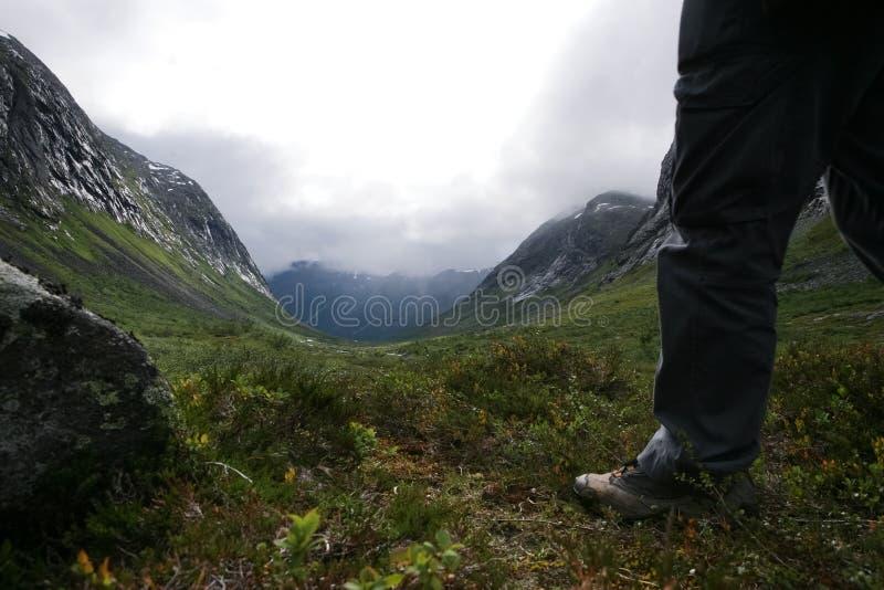 La Scandinavia, fotografia stock