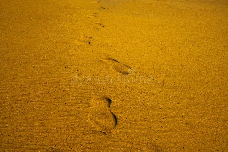 La scarpa dei passi stampa i segni sull'estate di vacanza del mare della spiaggia di sabbia immagine stock libera da diritti
