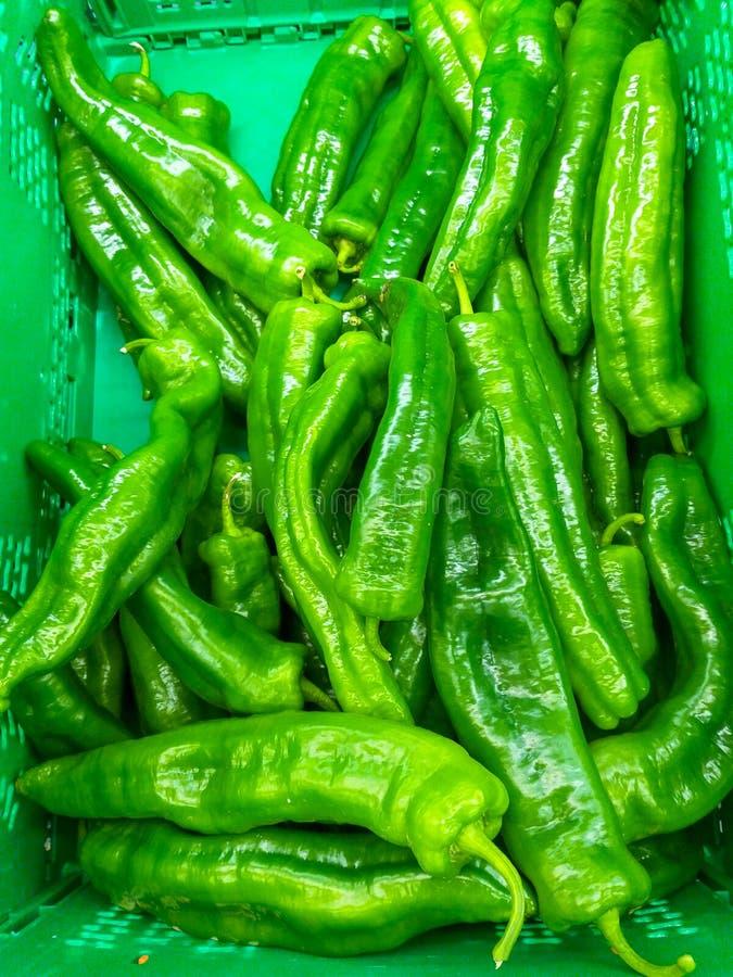 la scatola verde di plastica all'abbondanza del mercato dei peperoni verdi del mucchio ha raccolto appena pronto ad essere vendut fotografia stock libera da diritti