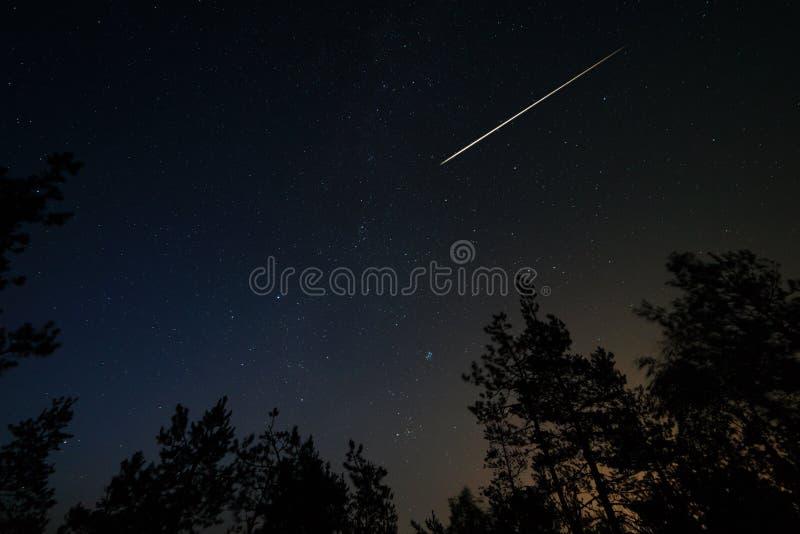 La scena di notte con il cielo stellato e la meteorite trascinano sopra la foresta fotografia stock libera da diritti
