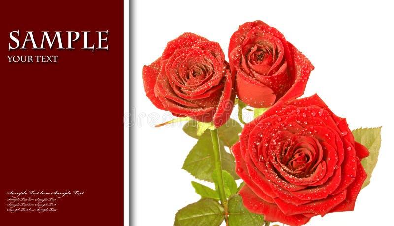 La scheda del biglietto di S. Valentino, colora la priorità bassa astratta royalty illustrazione gratis
