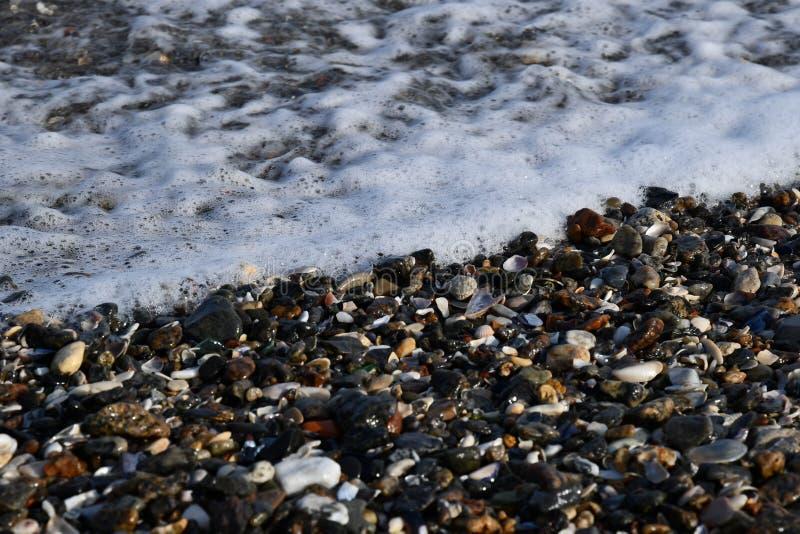 La schiuma bianca liscia delle onde del mare sta capitando le conchiglie fotografia stock libera da diritti