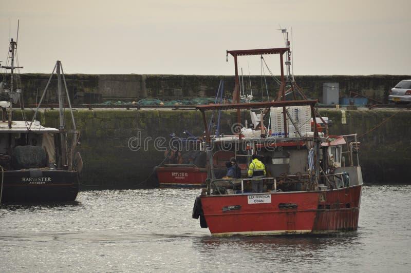 La sciabica ritorna a Pittenweem Fife Scozia Regno Unito fotografie stock libere da diritti