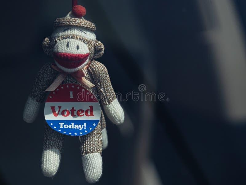 La scimmia del calzino i ha votato oggi fotografia stock