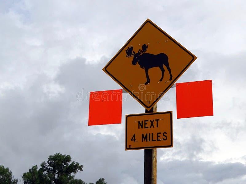 La señal de peligro que aconseja alces puede estar en la carretera para las 4 millas siguientes imagenes de archivo