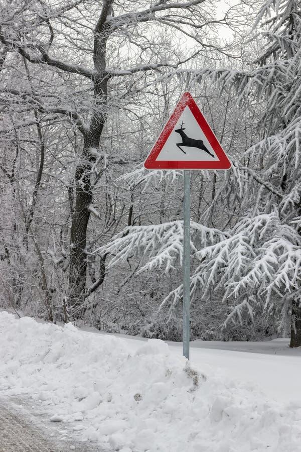 La señal de tráfico advierte la travesía de los ciervos imágenes de archivo libres de regalías