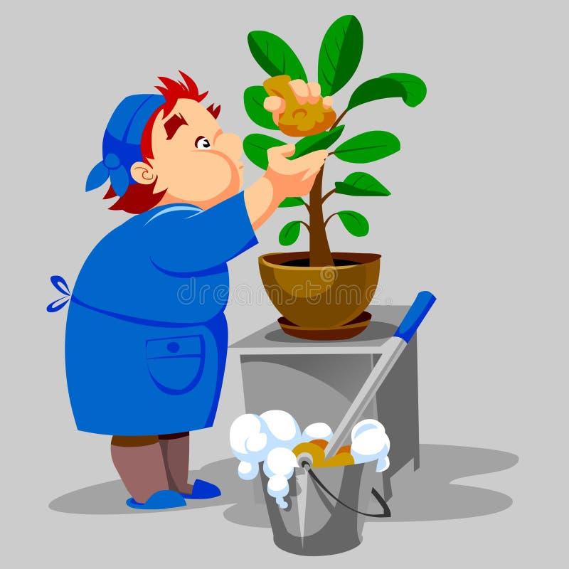 La señora de la limpieza lava el houseplant stock de ilustración